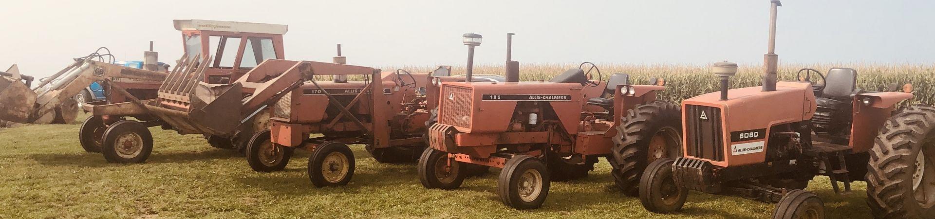 Img-6589