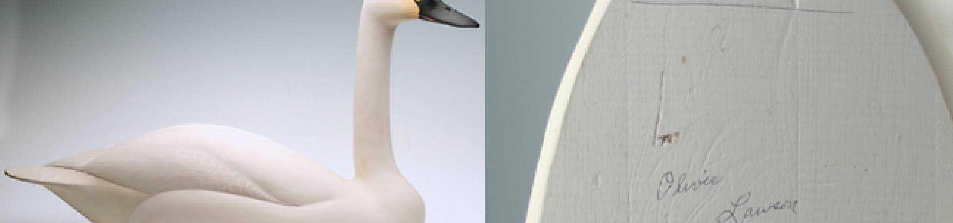 Swan-decoy-oliver-larson